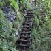 Bei dieser morschen Holztreppe kurz vor den Tellenfadlücke hielt ich das sichere Stahlseil zur Abwechslung mal fest ;-)