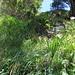 In der Flanke zum Rot Dossen.<br />Gemäss [u ossi] kann es wegen dem Foto kein T6 sein ;-)