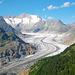 Dieses Bild kommt nicht aus der Schweiz-Brochure. Ich habe es auch nicht bearbeitet. Wenn man zur Hoflüe hochläuft (oder hochschwebt mit der Sesselbahn von Riederalp aus), hat man diese umwerfende Sicht auf den Aletschgletscher!