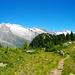 Der Südgrat zum Riederhorn ist sehr schön und einfach zu begehen!