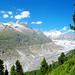Der längste Gletscher der Alpen!