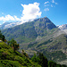 Auch das [http://www.hikr.org/tour/post15230.html Sparrhorn] ist ein interessanter Wanderdreitausender