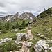 Trail #443