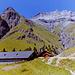Alp Pradgiant
