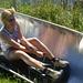 Sommerrodeln auf dem Rellerligrat