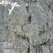 Die Felswand am Hinter Eggstock