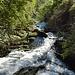 Una caratteristica è la sua stagionalità: il fiume scorre, generalmente, nel periodo da marzo fino a ottobre. L'intermittenza è dovuta al fatto che Fiume Latte rappresenta lo scarico di un sistema carsico, chiamato fonte Uga, che inizia nel Moncodeno sul versante nord del Grignone.
