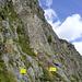 direkter Blick auf den Einstieg, links davon der B/C Klettersteig.<br /><br />(nicht im Bild:) Weiter links D, danach A/B, etwa 100meter weiter links Fernau Express (E)