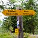 Auf einer Höhe von ca. 1700 Meter stösst man im Bergwald auf die Eggeri und folgt ihr Richtung Riedbach