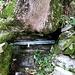 Alla bocchetta di Palanzo prendo la seconda discesa, indicazioni per Caslino d'Erba, 10min sotto la bocchetta si trova una fontanella con acqua, un pò scarsa ma utile