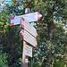 <b>Da qui si può scendere direttamente alla Villa Napoleonica di San Martino lungo il sentiero 221.</b>
