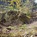 Mauerreste der Ruine Serviezel (Ramosch) von oben.