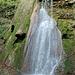 Beim grössten Wasserfall im Erlenbachtobel.