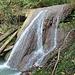 Ein schöner Wasserfall im Erlenbachtobel.
