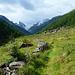 Turtgletscher - Blüomatt