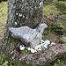 Natürliche Steinkunst. Legt sogar Eier. -:)