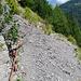 Rutschige Steilhänge sind ebenfalls gesichert