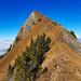 toller, leicht exponierter Gipfelanstieg