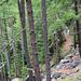 Speziell: die Drieri liegt oft nur wenige Höhenmeter unter der Chilcheri