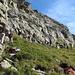 Der Klettergarten.