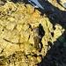 Darkthrone  ein einer ersten einfachen Kraxelstelle.
