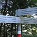 vom Parkplatz Gröllerkopf zur Gulmalpe