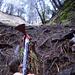 Unterwegs mit dem Pickel – Schlüsselstelle des Früetobel-Aufstiegs
