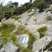 Der Wegabschnitt von der Alp Zilistock bis zum Gipfel ist blau-weiss markiert