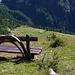 Alpe di Matogno da alpe Lago
