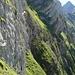 """Noch immer kann ich es kaum fassen, dass wir bei [http://www.hikr.org/tour/post14087.html jener] Tour diese steile Gras-/Schrofenwand (sog. """"falsche"""" Borsthaldenwand) direkt erstiegen haben! Da bekomm ich ja im Nachhinein nur schon vom Betrachten des Fotos schweissnasse Hände..."""