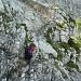 Anmarsch zum ersten Klettersteig