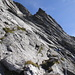 der rauhe Fels ist gut kletterbar