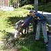 Miri wollte vom Eseli ein Foto machen, dieser kümmerte dies wenig und wollte lieber fressen ;o)