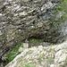 Klemmblock und rechts oben ist noch der Pfad zu sehen, der von der Abgelösten in die Scharte hinunter führt. Die letzten Meter des Pfads sind schon steil.