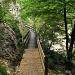 hervorragend ausgebauter Wanderweg