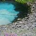 Vielfarbiges Wasser (Foto: [U sglider])