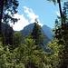 Auf dem Weg ins Hoellental. Bei der Hitze ist es ganz angenehm, dass der Weg groesstenteils im Wald verlaeuft.