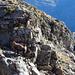 Steinböcke oberhalb Randinascia