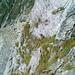 Blick zurück auf das ausgesetzte Grasband