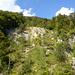 Der Steinbruch ist eigentlich ein Felssturz, ähnlich wie beim Schartenfels in Baden oder unterhalb des Lägerngrats vor dem Wettinger Horn.