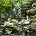 Die Ruinen von Balmei ca 900m im Val Lodrino