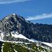 Die Gipfelkalotte der Mohnenfluh nochmals im Detail.