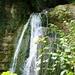 Wasserfall über Moos.