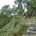 Treppenanlage hinauf nach Bresciadina...