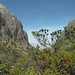Le pareti della stretta valle verso la Laguna