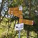 Wegweiser oberhalb Bosco/Gurin