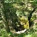 Reste des alten Sodbrunnens bei der Ruine Altlägern.