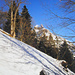Zoom von der Hirmiweid auf den winterlichen Hahnen.