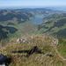 Der Schatten des Gipfelkreuzes weist zum Sihl-und Zürichsee