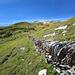 Diese Trockensteinmauer ist sicher 1 km lang. Ich nutzte sie zum Abstieg, war eine gute Übung für die Trittsicherheit.